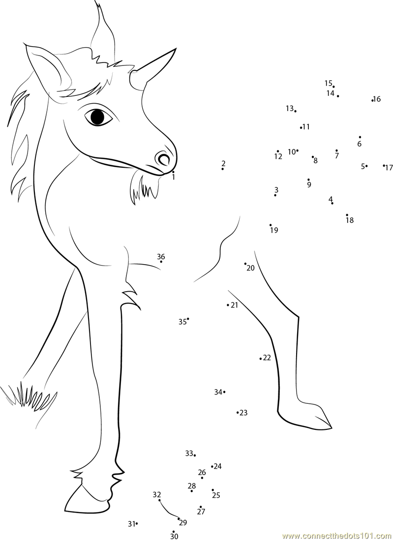 Unicorn_Baby_connect_dots